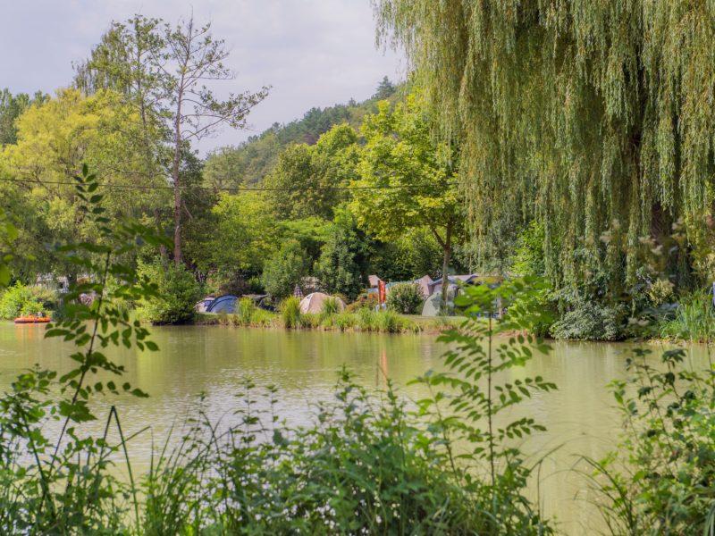 Vijver - Le Moulin de la Pique