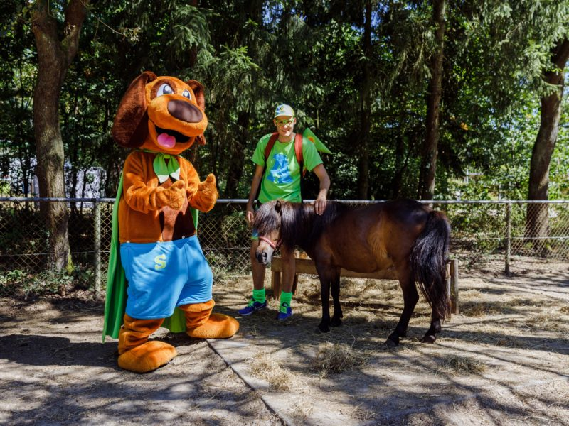 Dierenhoeve pony met Alex en Sammy - De Noordster