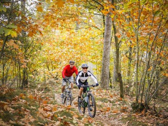 Landal - Twenhaarsveld - Mountainbiken