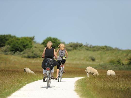 Landal - Dunimar - fietsen