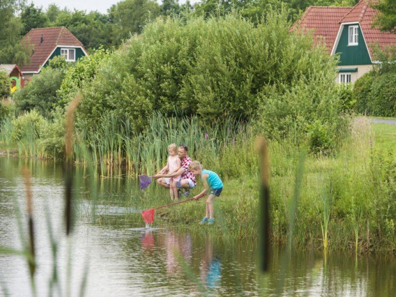 Landal - Hunerwold State - Vissen
