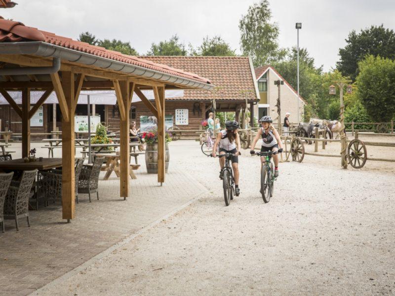Landal - Het Land van Bartje - Mountainbiken