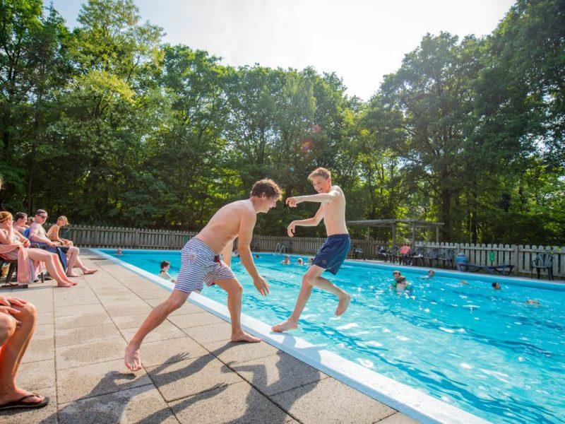 Rabbit Hill - kids-campings - in het buitenzwembad