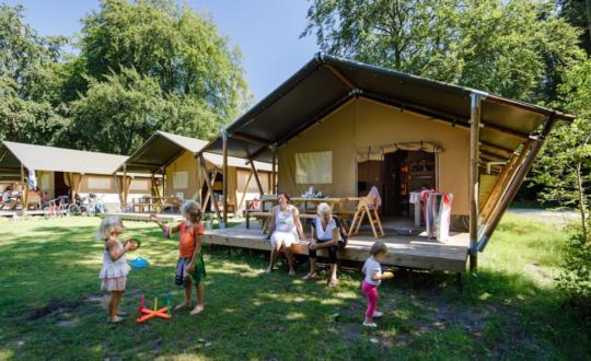 Het Grote Bos - Kids-Campings.com