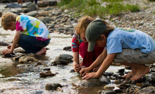Leukste kinderactiviteiten op de camping