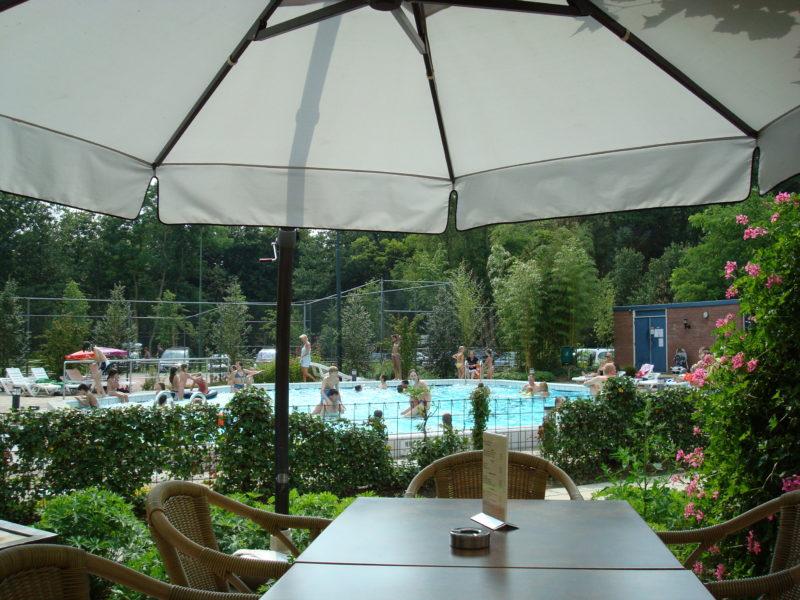 Bonte vlucht - kids-campings - Terras met zwembad