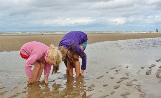 Impactrip: combineer bewustzijn van de natuur met een gezinsvakantie