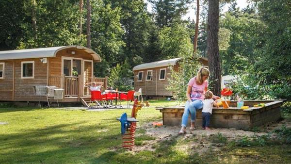 De Leemkule - kids-campings - veld met pipowagens