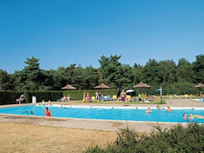 Kamperen Op De Veluwse Hoevegaerde Kids Campings
