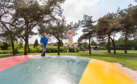 De Veluwse Hoevegaerde - Kids-Campings.com