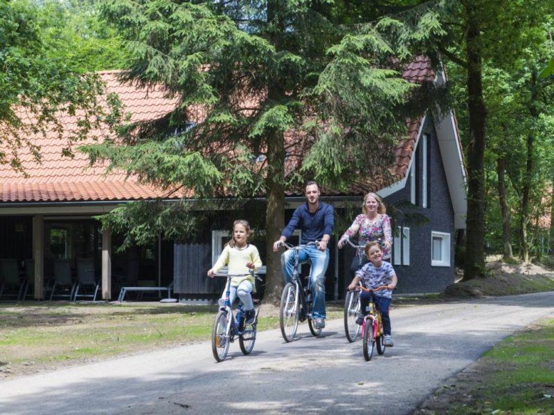 Landal - Miggelenberg - park