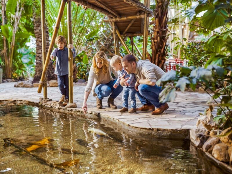 De Huttenheugte - kids-campings -de jungle