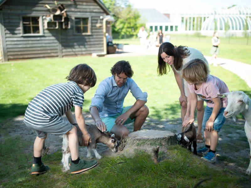 Limburgse Peel - kids-campings - kinderboerderij