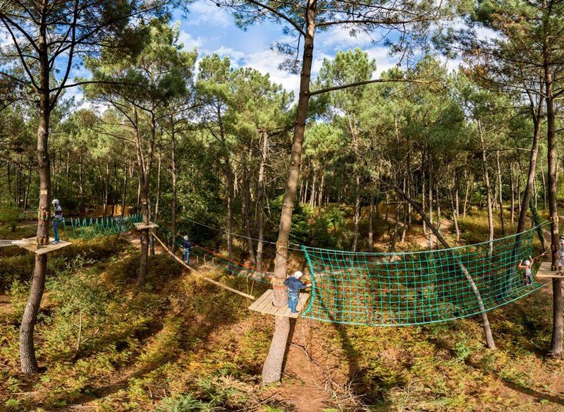 Le Bois Aux Daims - kids-campings - klimmen tussen de bomen