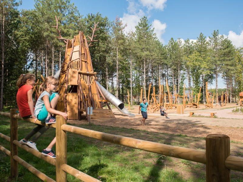 Le Bois Aux Daims - kids-campings - speeltuin