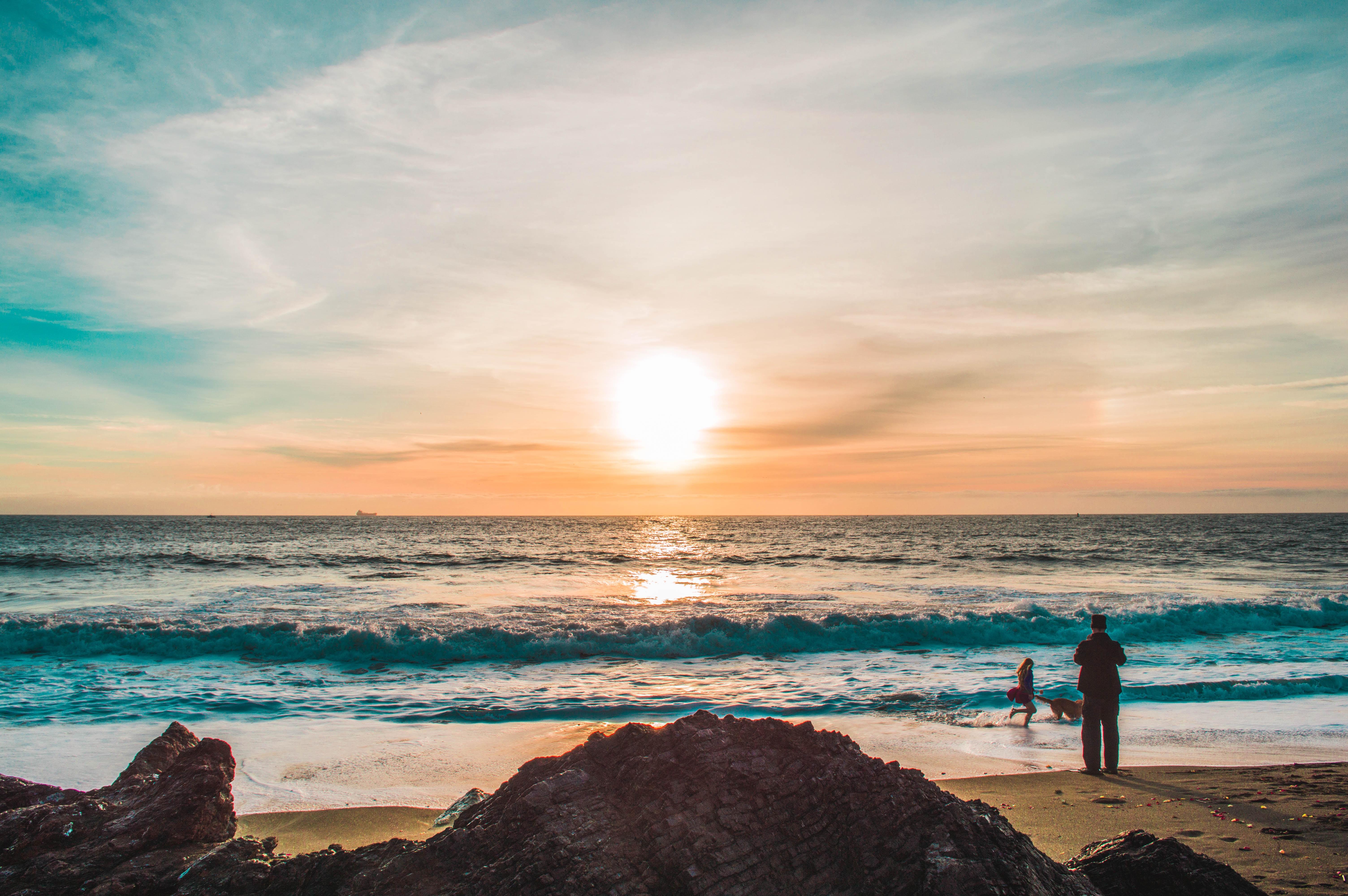 Hondvriendelijke strandvakanties
