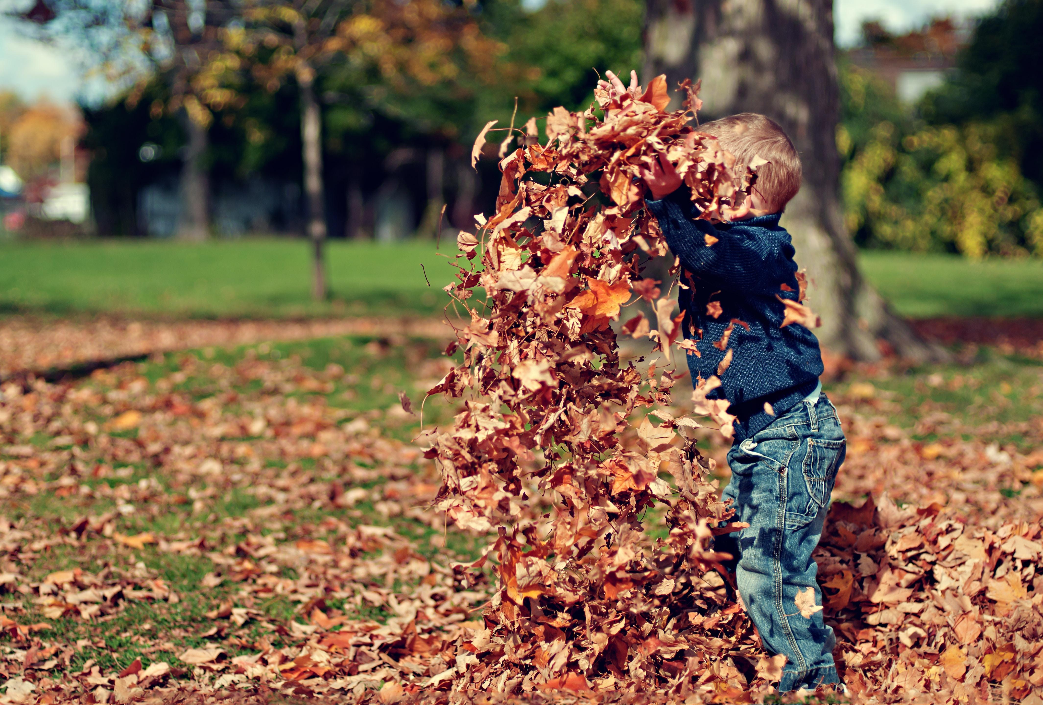 Kind speelt met herfstbladeren