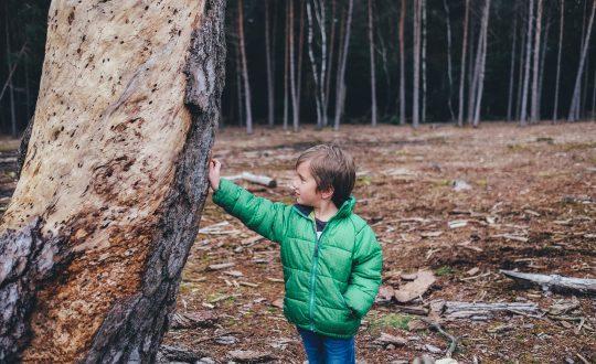 Duurzame camping activiteiten met de kinderen