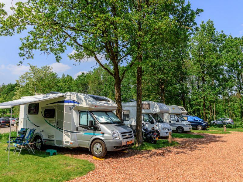 De Reeënwissel - kids-campings.com