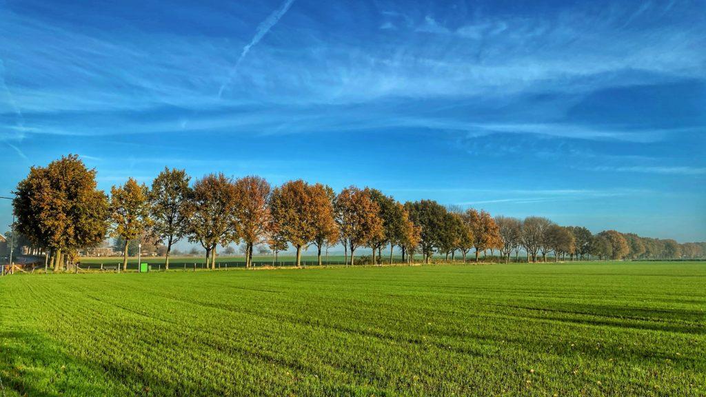 Hemelvaart in Limburg